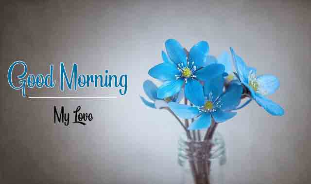Best HD New Love Good Morning Images