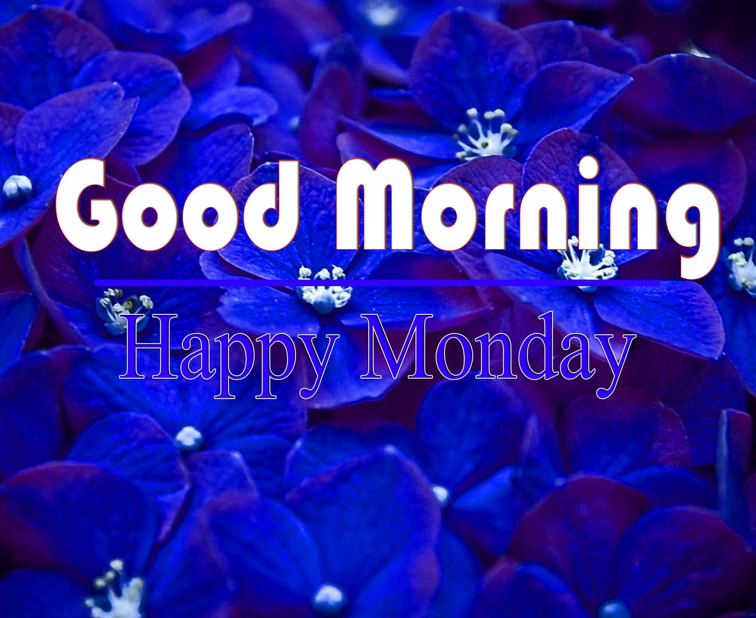 Best HD New Monday Good Morning Pics pictures 1
