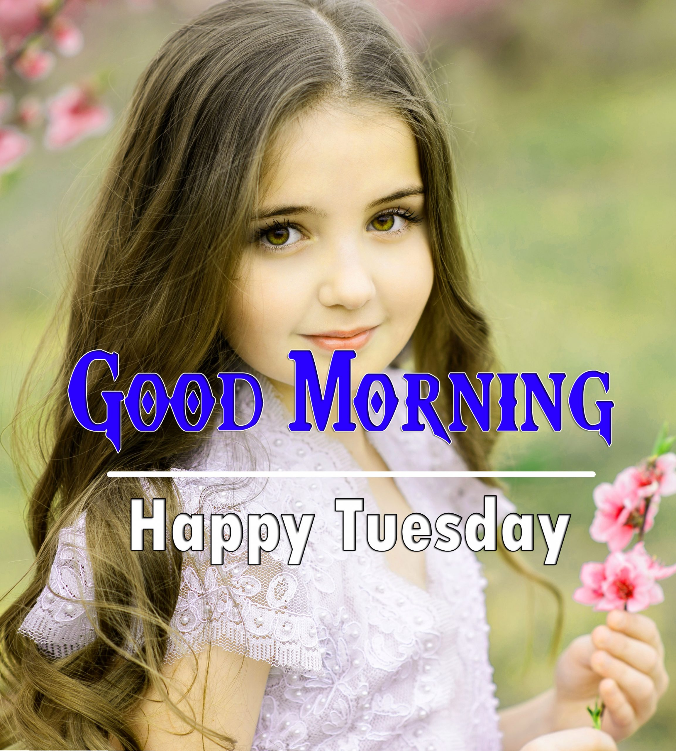 Best HD Tuesday Good morning Images 1