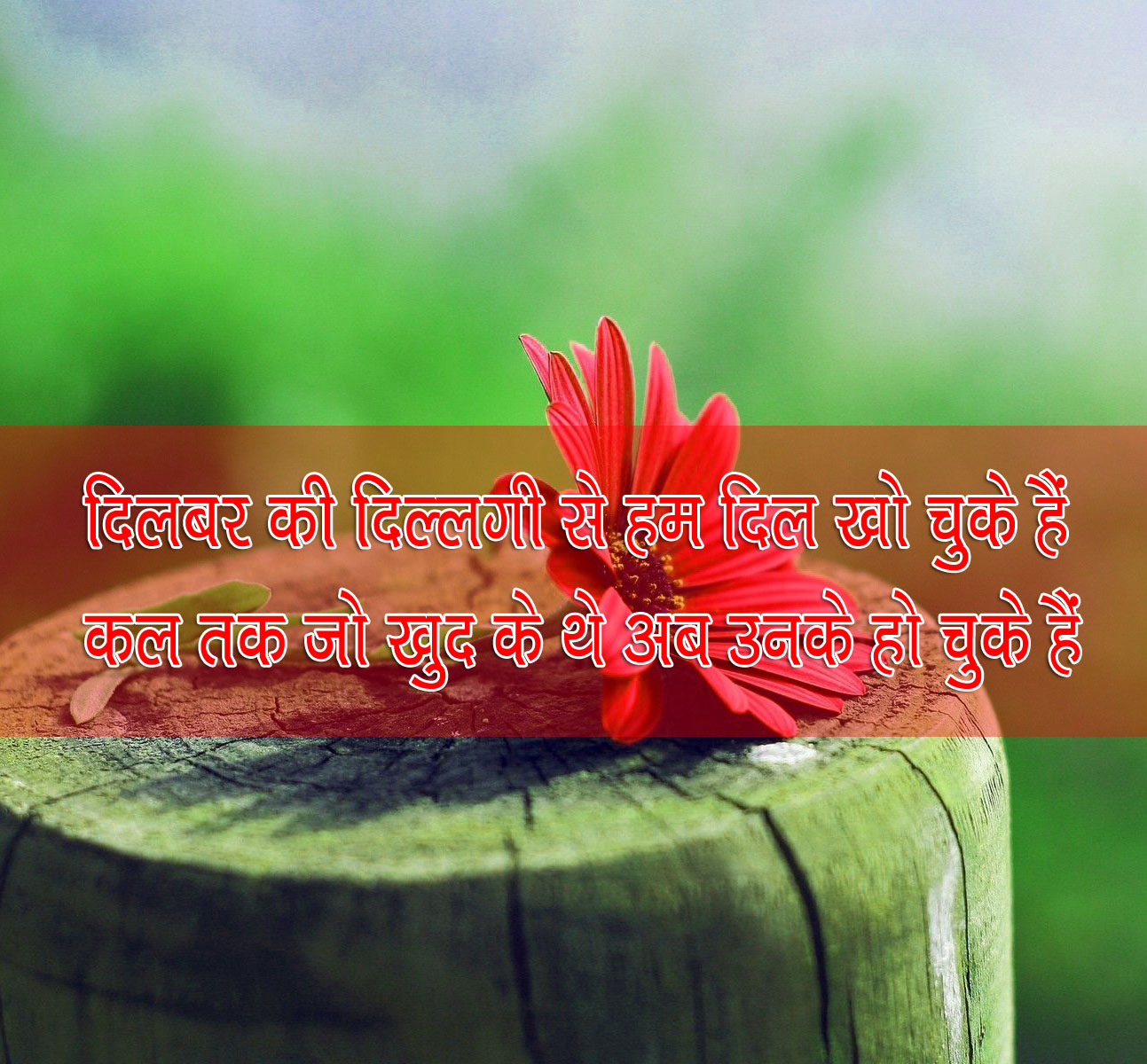 Best Hindi Shayari Images 25