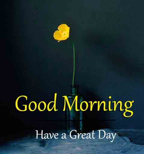 Best Quality Good Morning Dear Images 2
