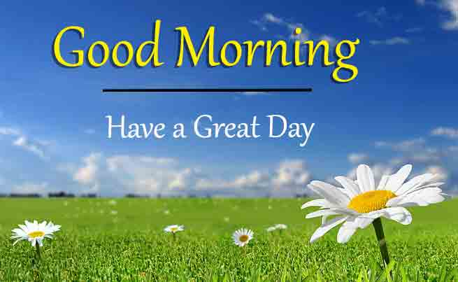 Best Quality Good Morning Dear Images 3