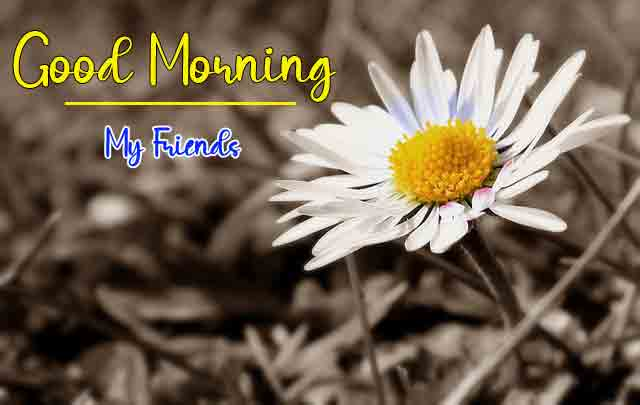 Best Quality Good Morning Images 2 1