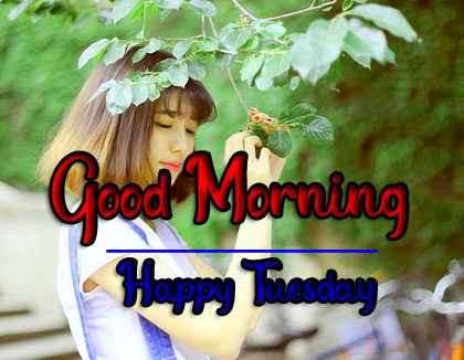 Best Quality HD Tuesday Good morning Images 1