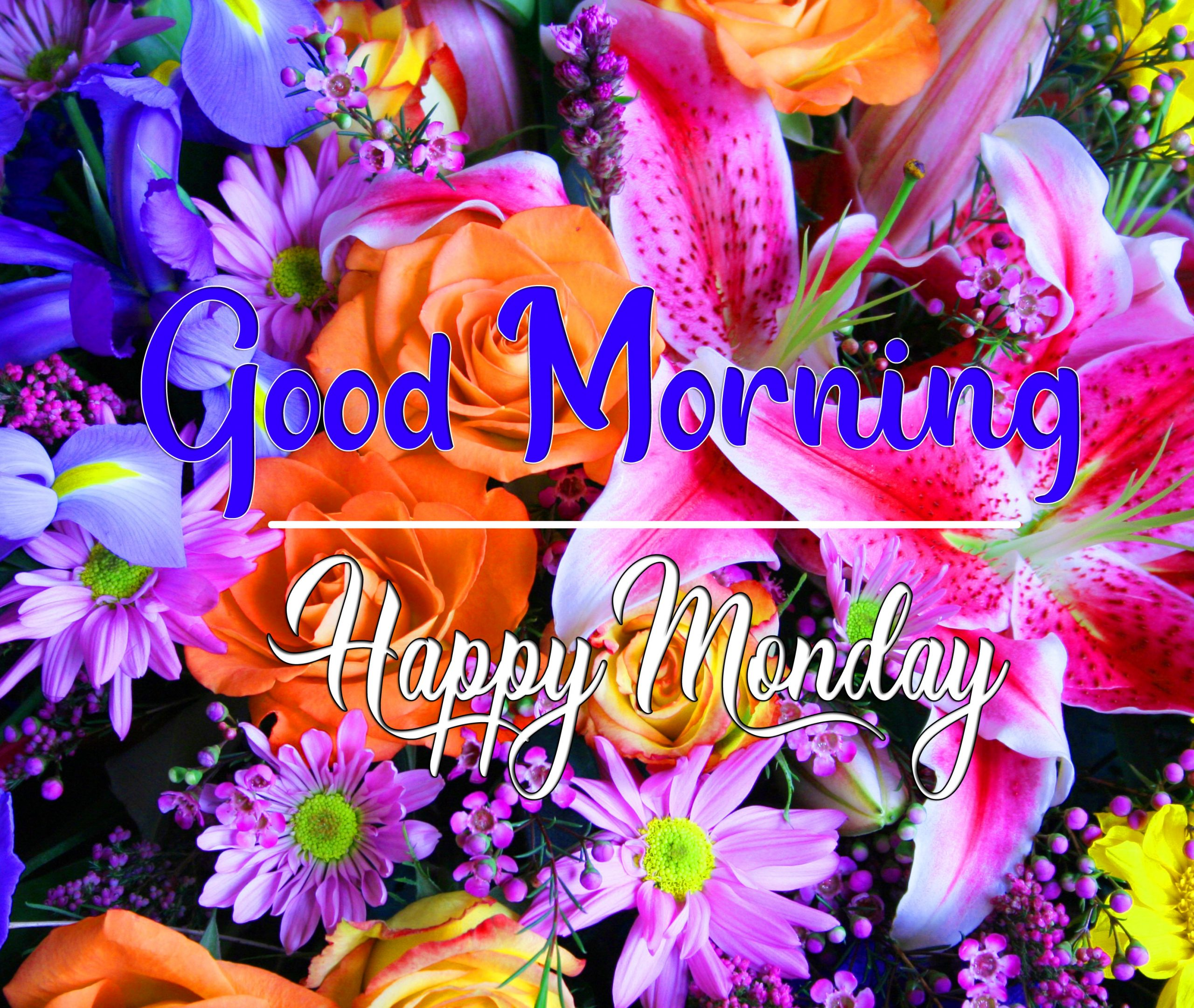 Best Quality Monday Good Morning Images 1