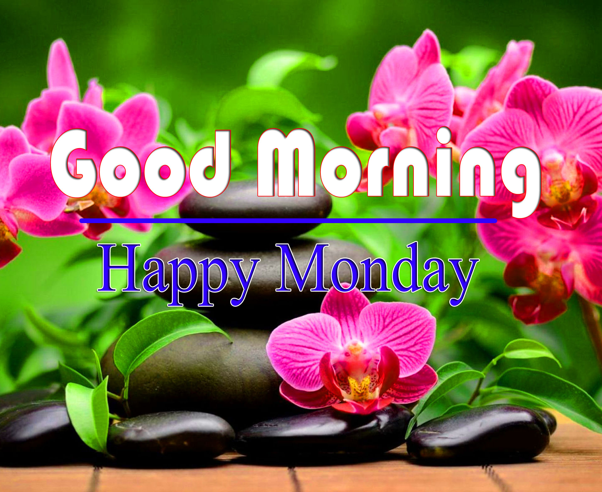 Best Quality Monday Good Morning Images 2021 1