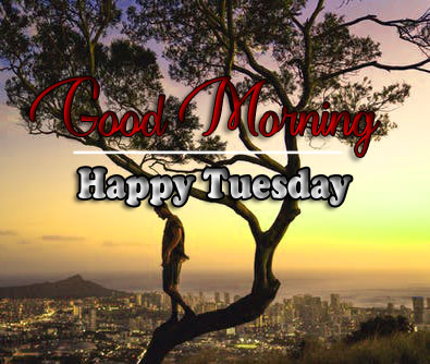 Best Quality Tuesday Good morning Images 3