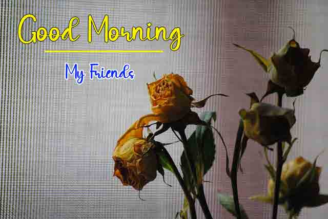Best Quality good morning Images 2