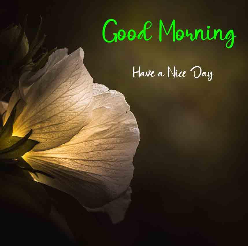 Best Top Beautiful Love Good Morning Wallpaper