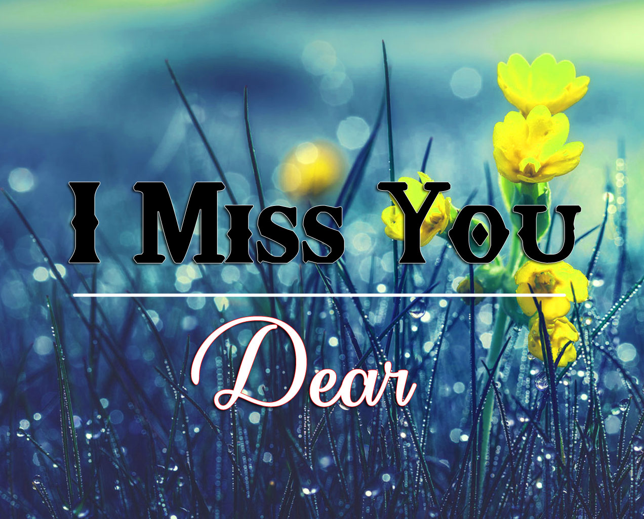 Dear HD I miss you Images
