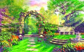 Flower DP Wallpaper 2