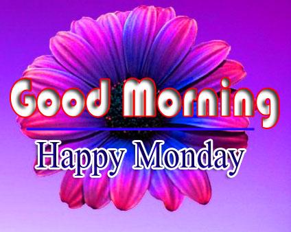 Flower Monday Good Morning Images 2 1