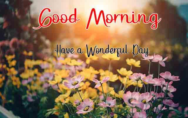 For Friend Good Morning Dear Wallpaper 2021