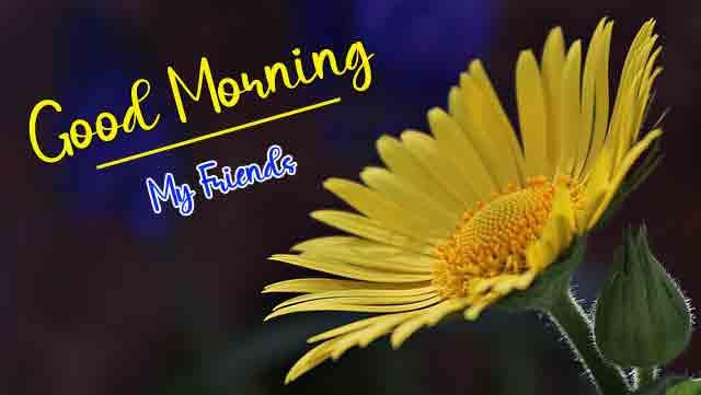 For Friend Good Morning Wallpaper