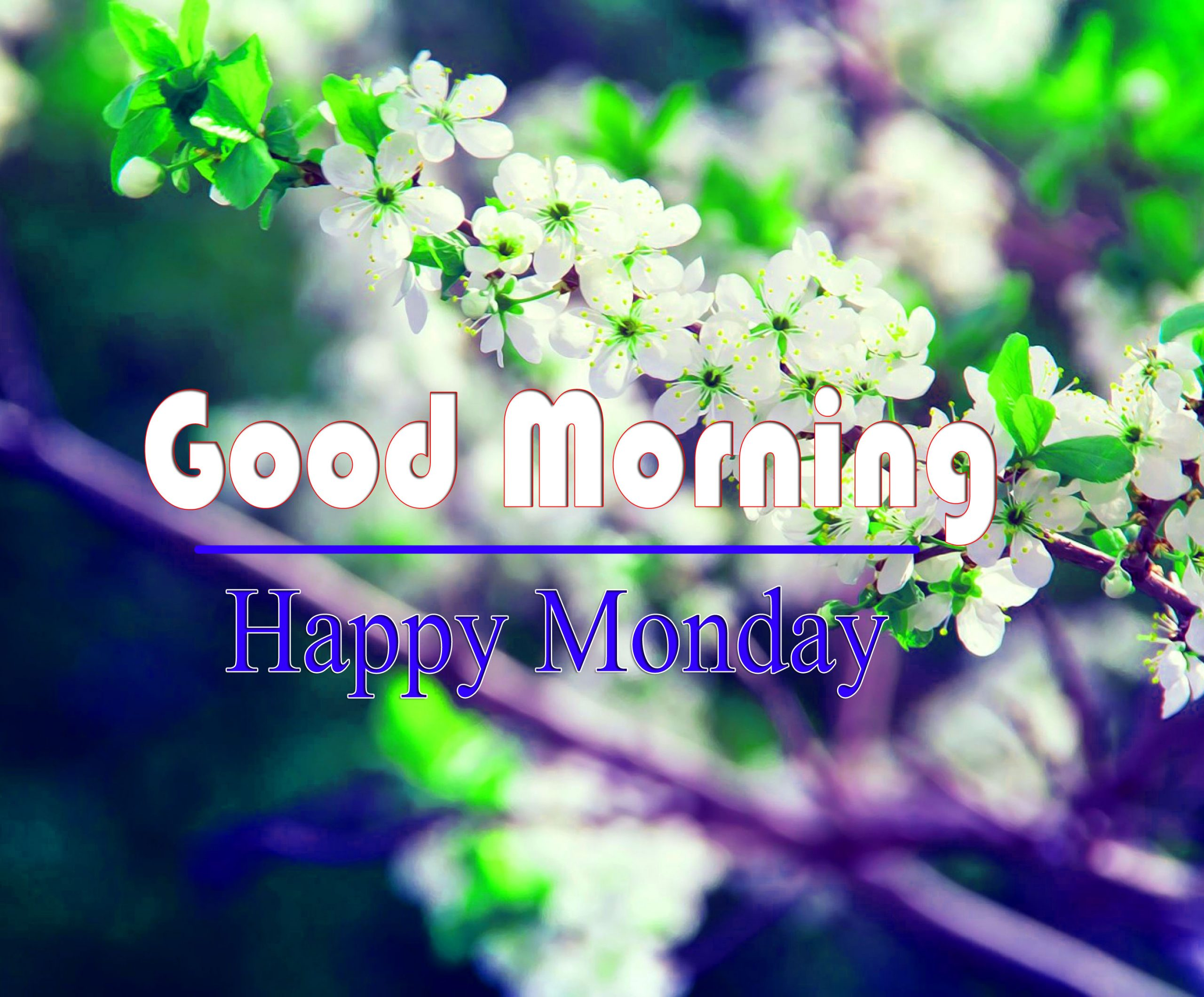 For Friend Monday Good Morning Images 1