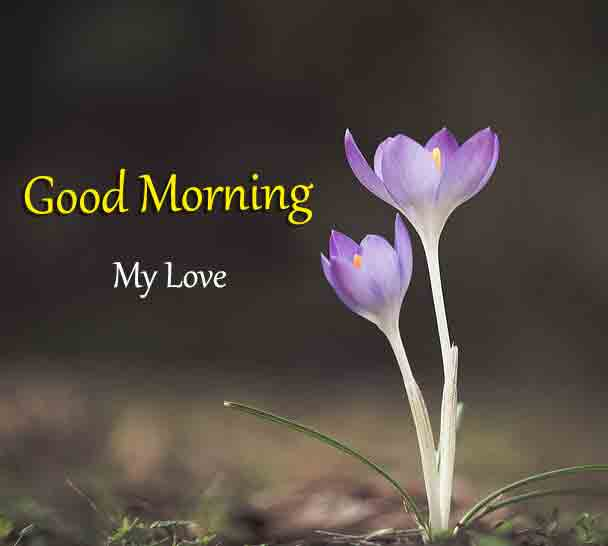 For Friend good morning Images