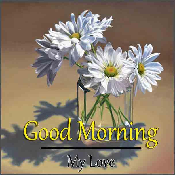 Free 4k Good Morning Wallpaper With Flower
