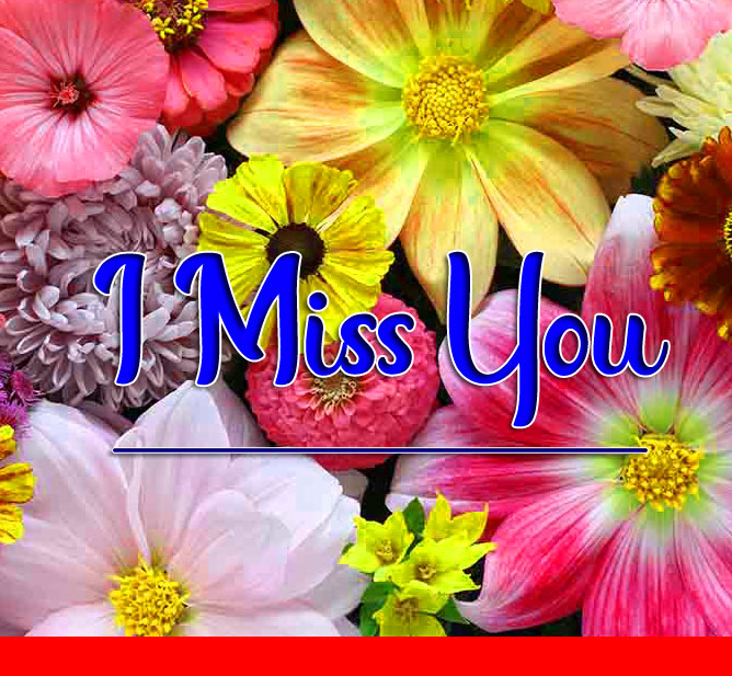 Free Best HD I miss you Images 1