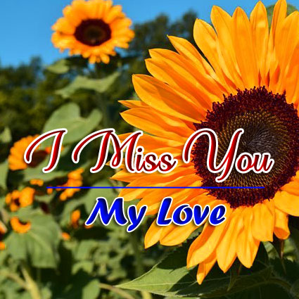 Free Best Quality I miss you Images
