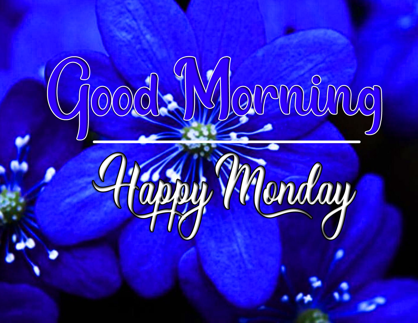Free Best Quality Monday Good Morning Images 1