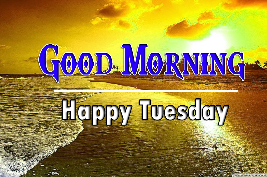 Free Best Quality Tuesday Good morning Images