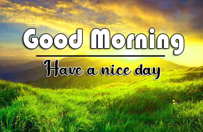 Free Best Quality good morning Whatsapp dp Images 4