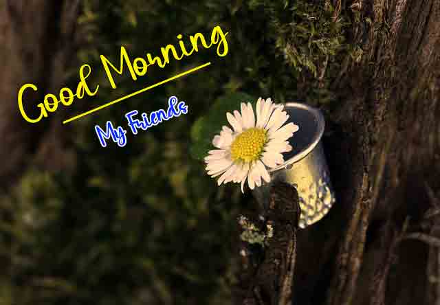 Free Good Morning Images for Facebook