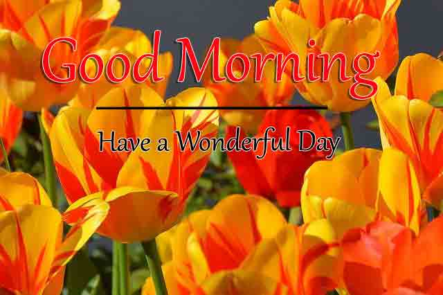 Free HD Good Morning All Images Fresh
