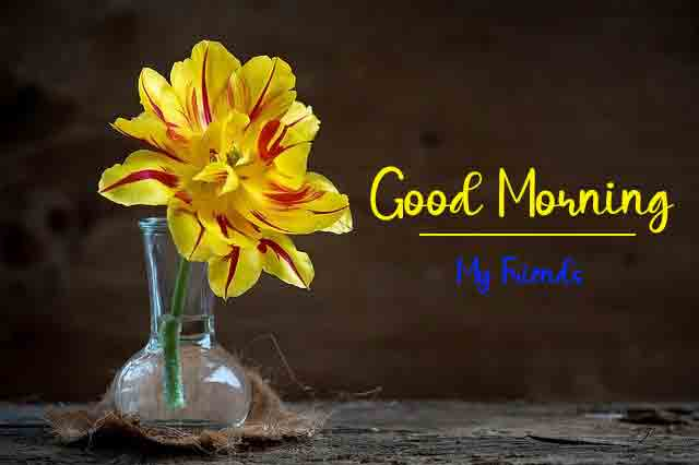 Free HD Good Morning All Images