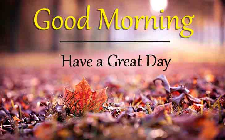 Free HD Good Morning Dear Images 3