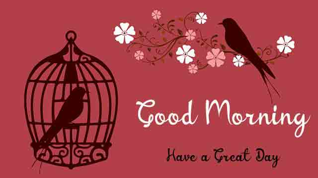 Free HD Good Morning Dear Images 4