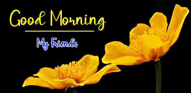 Free HD Good Morning Dear Images 5
