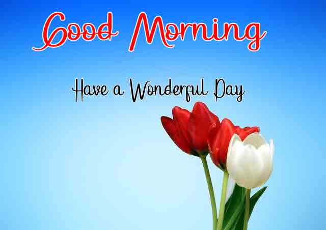 Free HD Good Morning Images 7
