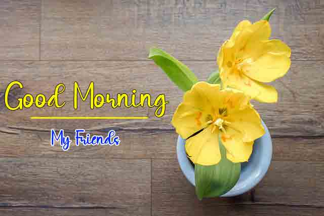 Free HD Good Morning Wallpaper