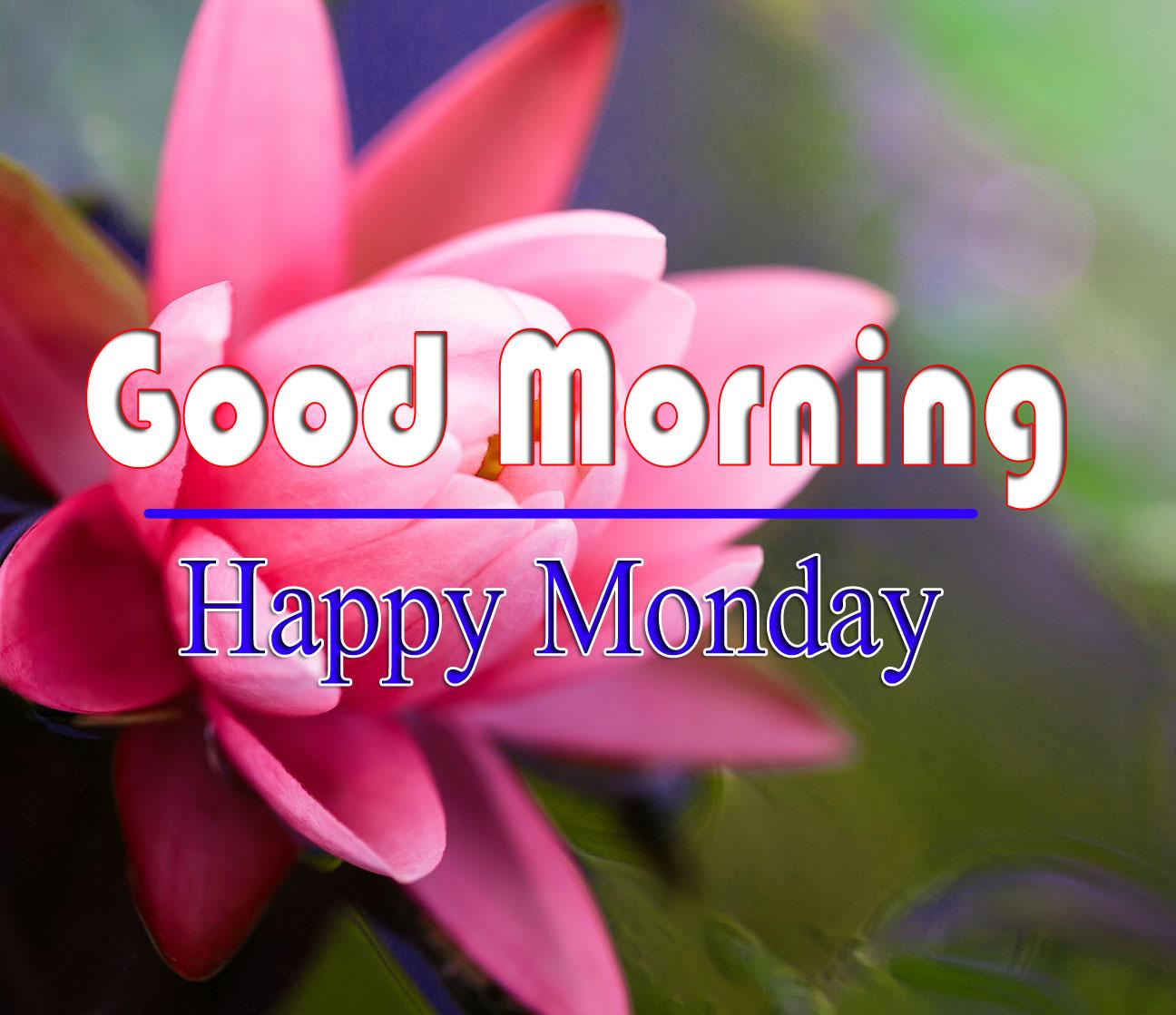 Free HD Monday Good Morning Images 1