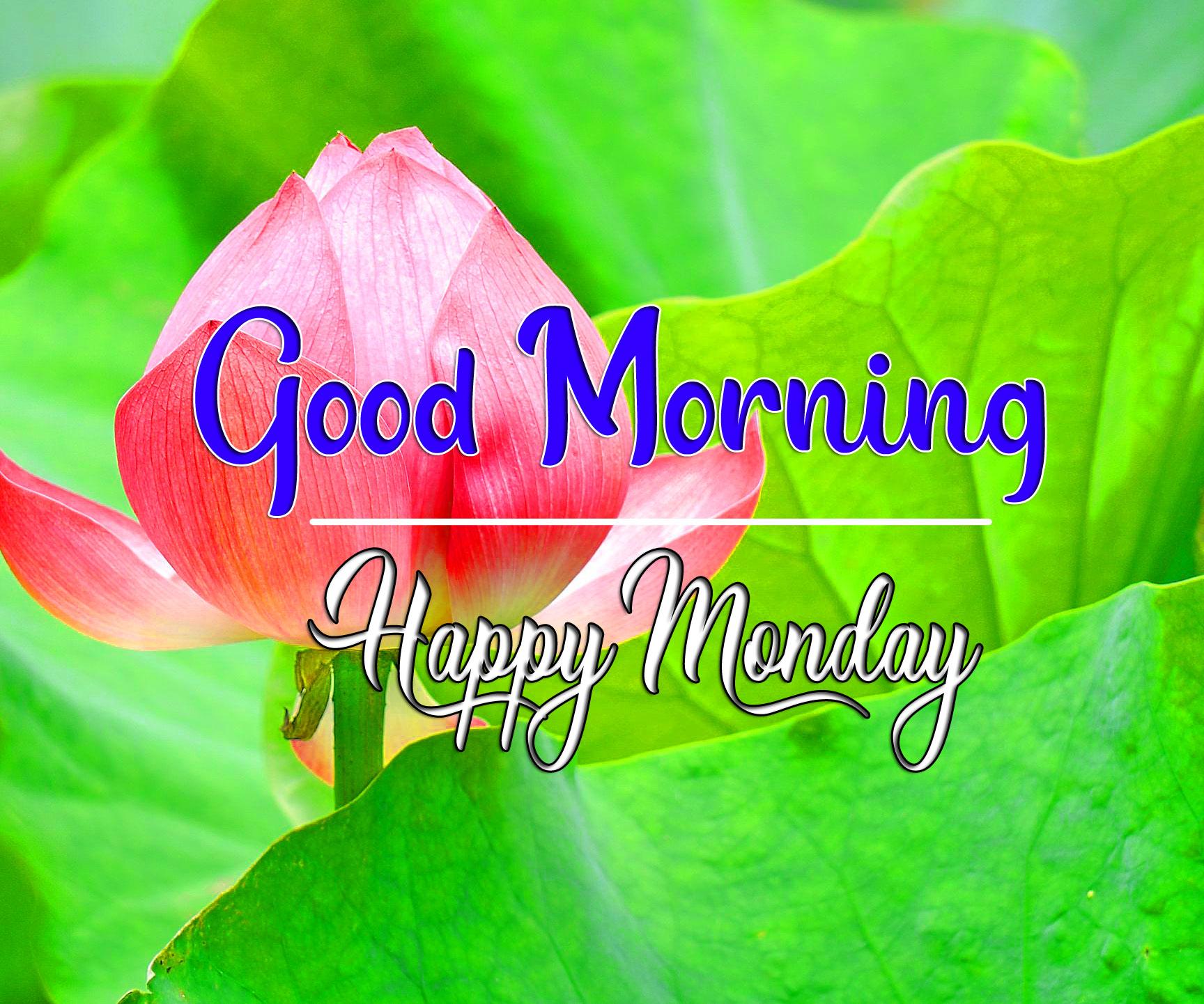 Free HD Monday Good Morning Images 3 1