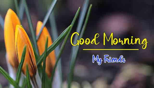 Free Love Good Morning Wallpaper