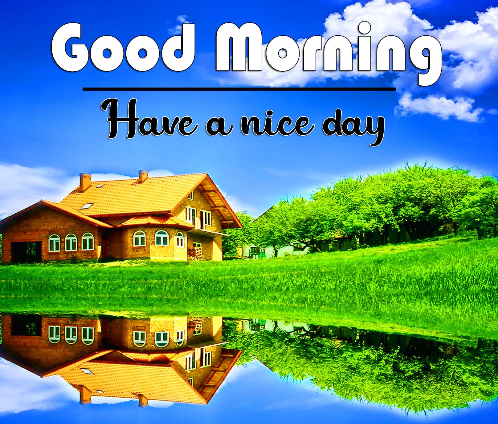 Free Nature HD good morning Whatsapp dp Images