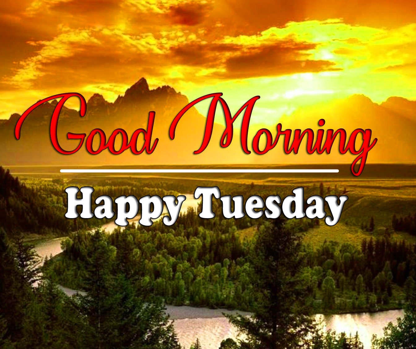 Free New Best Tuesday Good morning Images 2