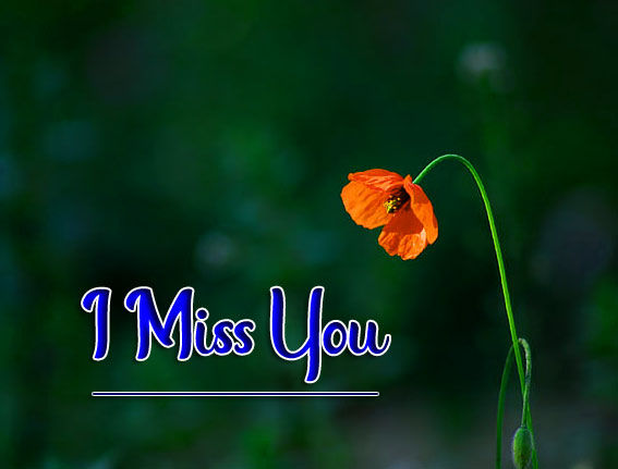 Free Top Quality I miss you Images