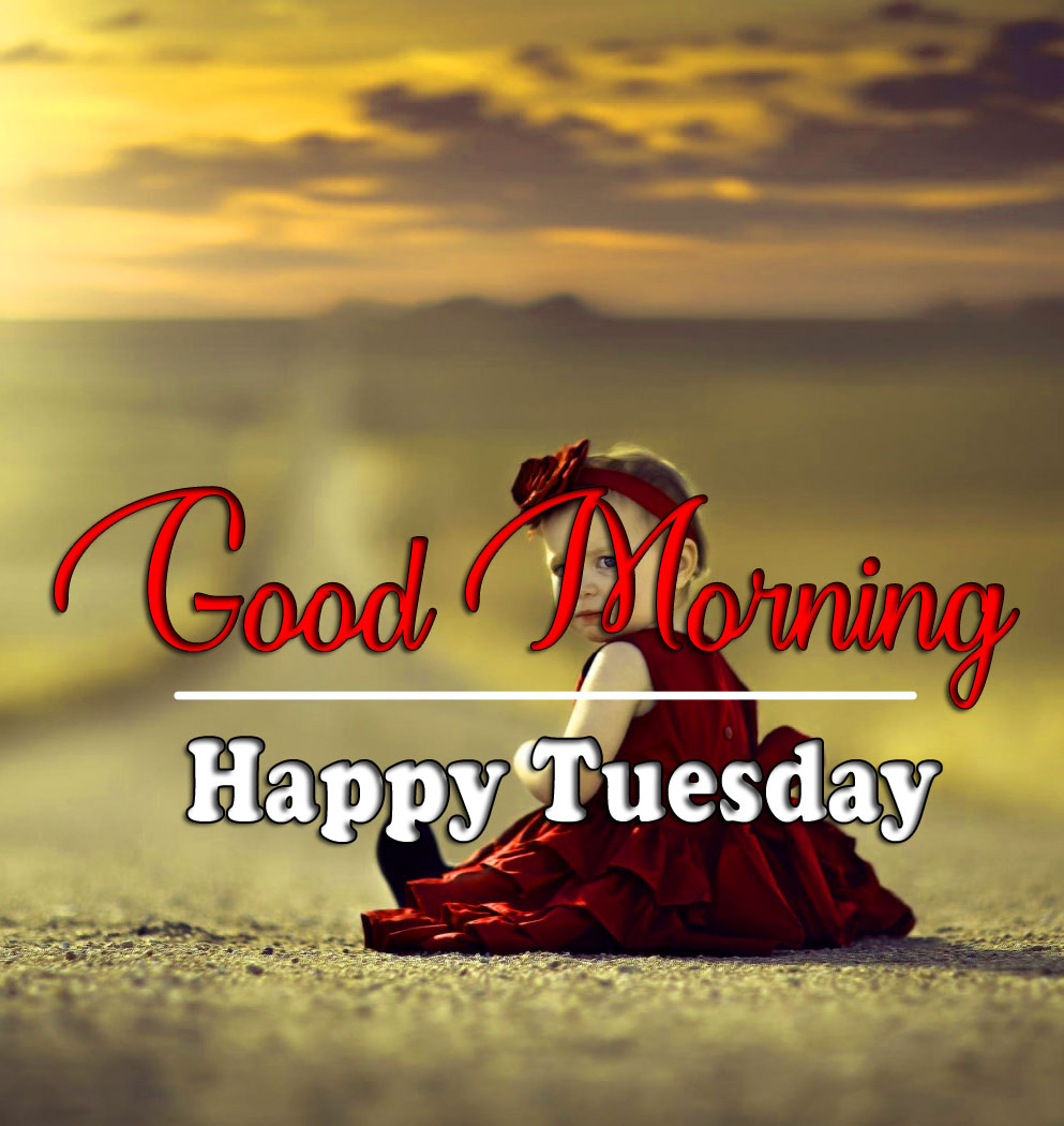 Free Tuesday Good morning Wallpaper 2021 2