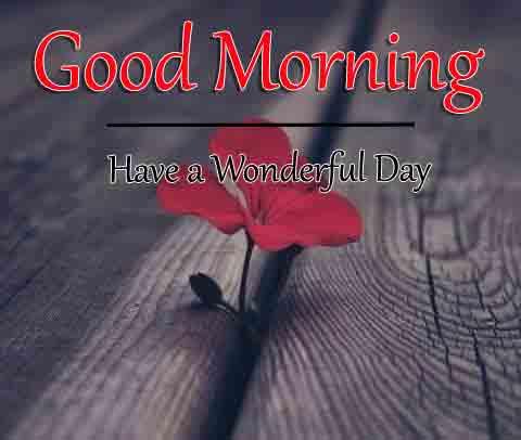 Fresh Good Morning Dear Images