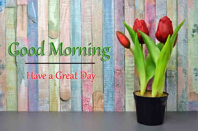 Fresh HD Good Morning All Images 2021