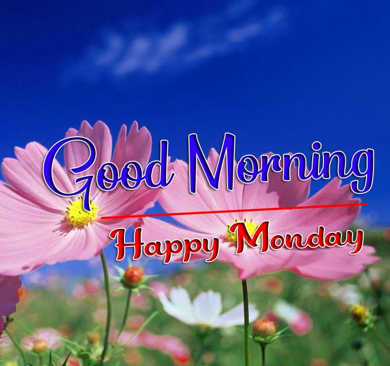 Fresh Monday Good Morning Images 2