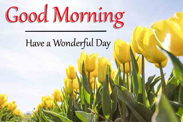 Good Morning All Images for Friend 2