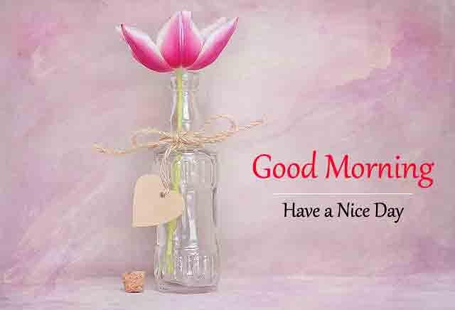 Good Morning All Images for Friend