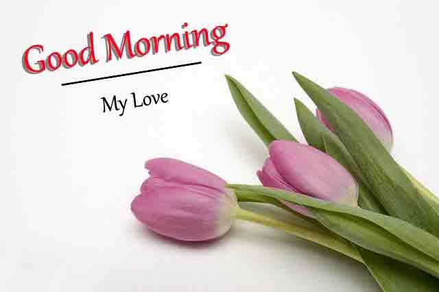 Good Morning All Pics Download 2