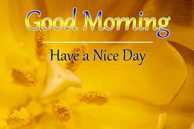 Good Morning All Pics Pictures Download