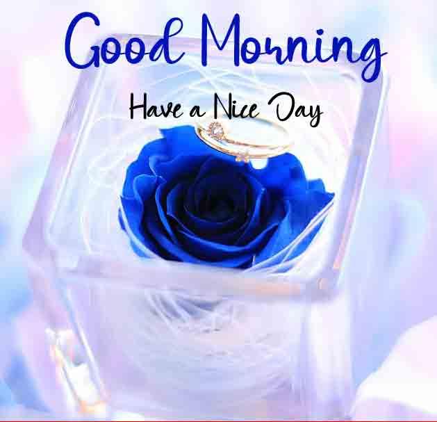 Good Morning Dear Photo Download
