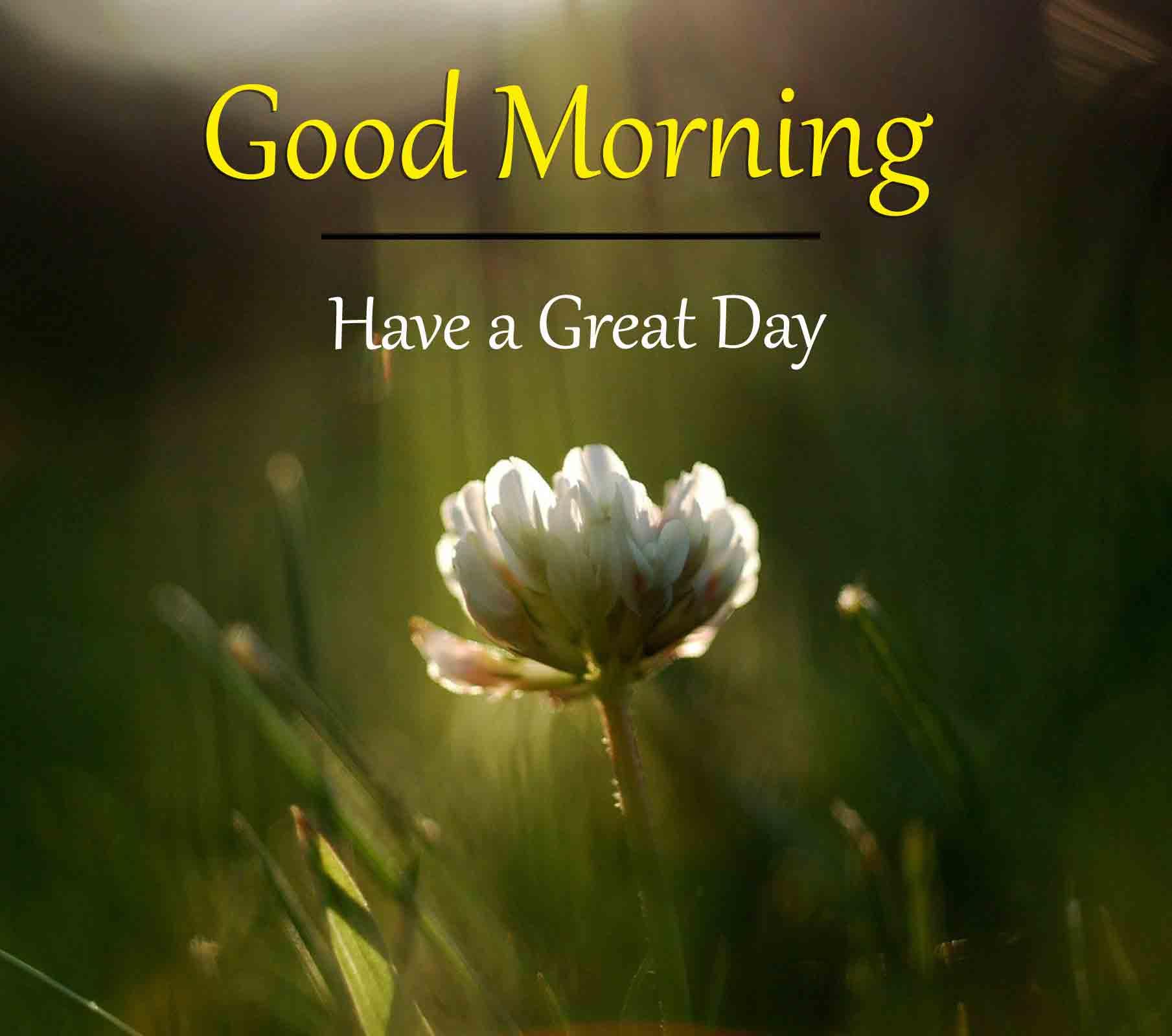 Good Morning Dear Pics 2